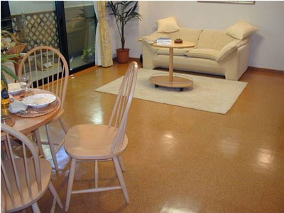家庭装修之软木地板的选购-木地板资讯-中国著名品牌
