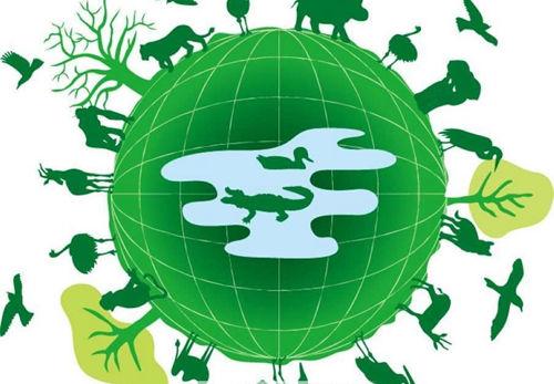 世界无车日 环保绿色是木地板行业永恒不变的主题