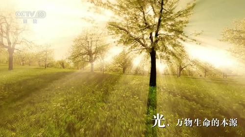 """照明品牌登陆央视展播 """"天下无人不识澳克士"""""""