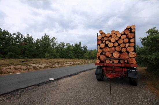 总投资72.36亿 来宾木材加工产业发展步入快车道